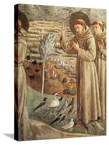 Stories from Life of St Francis, Preaching to Birds--Stretched Canvas Print