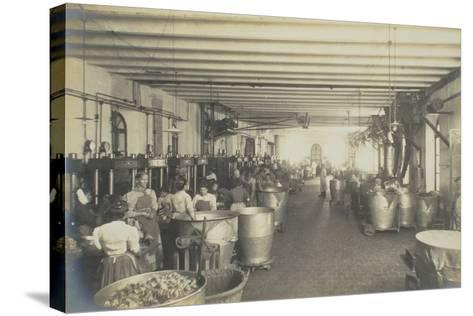 Pressing Room, from 'Industrie Des Parfums a Grasse', C.1900--Stretched Canvas Print
