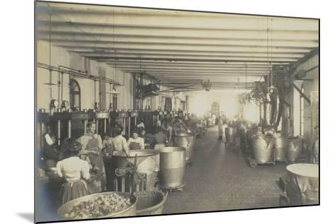 Pressing Room, from 'Industrie Des Parfums a Grasse', C.1900--Mounted Photographic Print