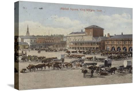 Postcard Depicting Cattle and Other Livestock in the Market Square--Stretched Canvas Print