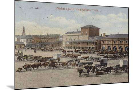 Postcard Depicting Cattle and Other Livestock in the Market Square--Mounted Photographic Print