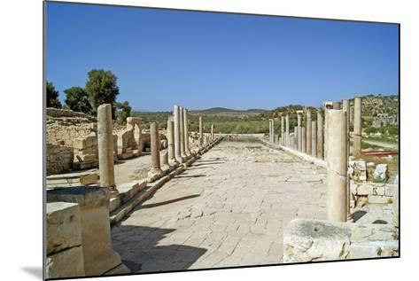 View of the Partially Restored Main Street of Patara, Turkey--Mounted Photographic Print