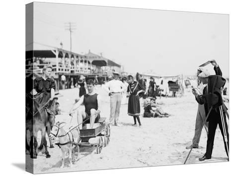 They Were on their Honeymoon, St. Augustine, Florida, 1900-05--Stretched Canvas Print