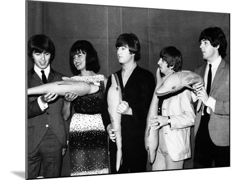 The Beatles Hold Souvenir Bottlenose Dolphins, February 1964--Mounted Photographic Print