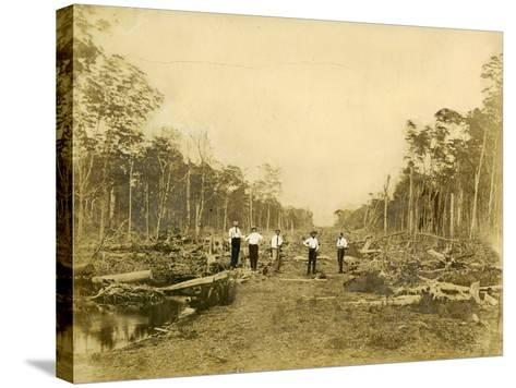 Five Men Stand in the Clearing That Would Become Lincoln Road, March 1905--Stretched Canvas Print