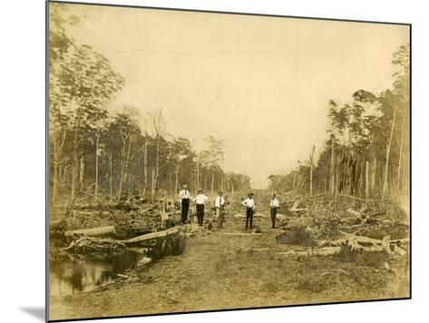 Five Men Stand in the Clearing That Would Become Lincoln Road, March 1905--Mounted Photographic Print