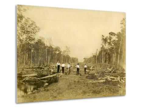 Five Men Stand in the Clearing That Would Become Lincoln Road, March 1905--Metal Print
