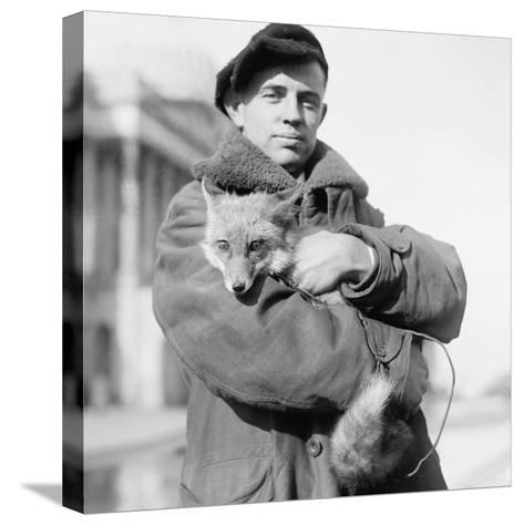 Portrait of a Man Holding His Pet Fox in Washington DC, 1918--Stretched Canvas Print