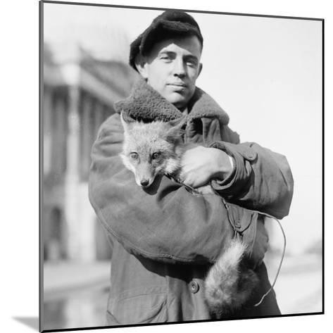 Portrait of a Man Holding His Pet Fox in Washington DC, 1918--Mounted Photographic Print