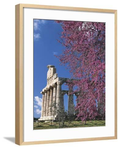 Temple of Athena also known as Temple of Ceres, Paestum--Framed Art Print