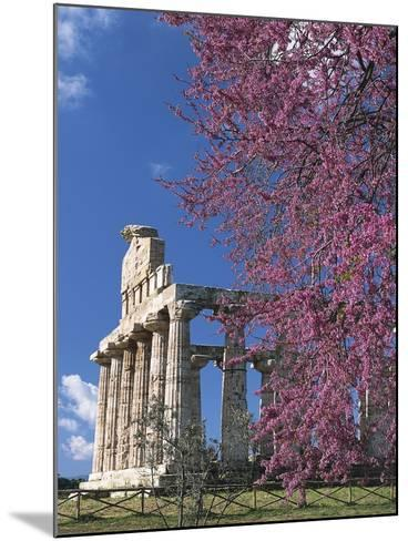 Temple of Athena also known as Temple of Ceres, Paestum--Mounted Photographic Print