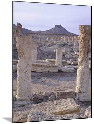 Syria, Palmyra, View of Ruins with Umayyad Fortress in Background--Mounted Photographic Print