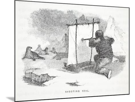 Shooting Seal-Elisha Kane-Mounted Giclee Print