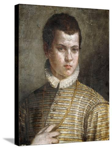 Portrait of a Young Man, Bust-Length, Wearing a Striped Costume and a White Ruff-Paolo Caliari-Stretched Canvas Print