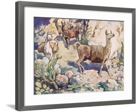 Alpacas on a Mountain Path-John Edwin Noble-Framed Art Print