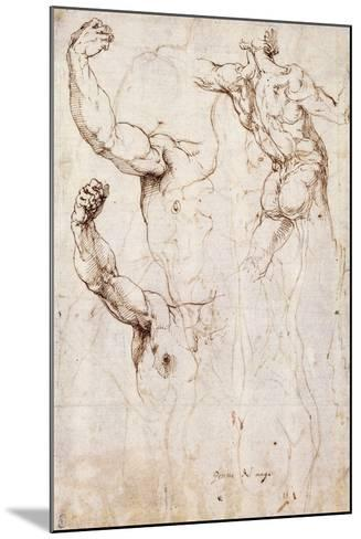 The Back of a Nude and Two Studies of a Raised Arm and Shoulder, Seen from the Front-Perino Del Vaga-Mounted Giclee Print