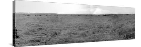 Panorama of Gliders Landed on D-Day on German Coastal Defences of the Atlantic Wall--Stretched Canvas Print