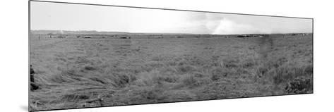 Panorama of Gliders Landed on D-Day on German Coastal Defences of the Atlantic Wall--Mounted Photographic Print