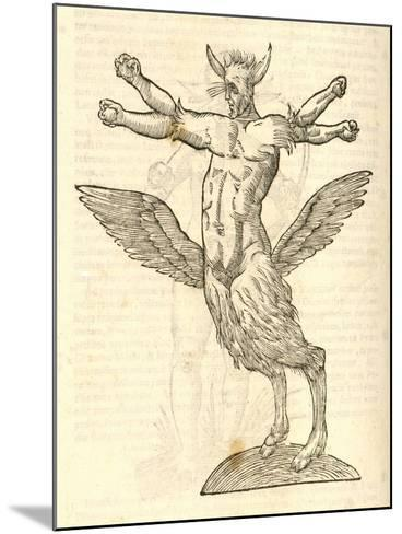 "Illustration of ""Monstrum Tetrachiron Alatum Capite Humano Aurito""--Mounted Giclee Print"