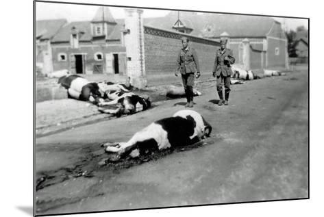 Two German Soldiers Among a Herd of Dead Cows in Front of a Farm--Mounted Photographic Print