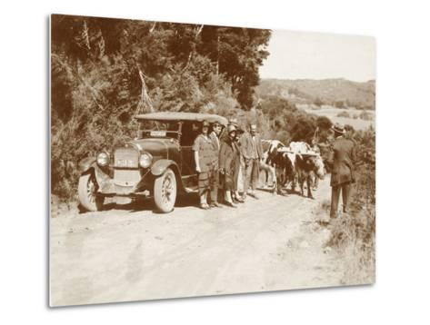 Travellers Posing Beside their Car with Two Oxen and a Cattle Driver--Metal Print