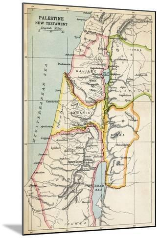 Map of Palestine as Described in the New Testament--Mounted Giclee Print