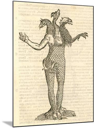 "Illustration of ""Monstrum Triceps Capite Vulpis--Mounted Giclee Print"