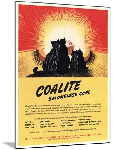 Advert for 'Coalite' Smokeless Coal--Mounted Giclee Print