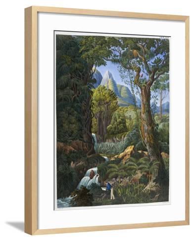Morenia Poppigiana and Forest--Framed Art Print