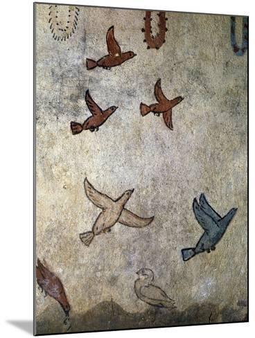 Birds in Flight--Mounted Photographic Print