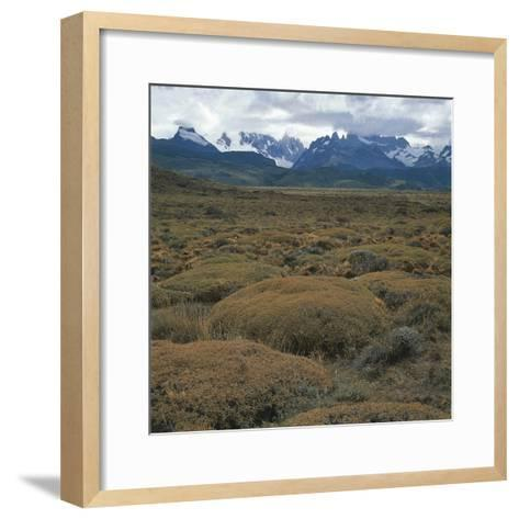 Semi-Desert Steppe with Plants of Mulinum Spinosum, the Group of Fitz Roy in the Background--Framed Art Print