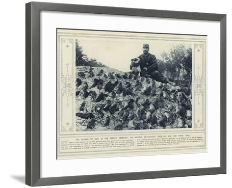 The Plague of Rats in the French Trenches, an Official Rat-Catcher, with His Dog, and their Bag--Framed Art Print