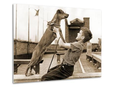 """A Boy and His Dog Brownie, Winner of """"The Biggest Tramp""""Competition, New York 1938--Metal Print"""