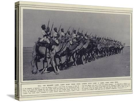 Will the Bikaner Camel Corps Bring their Usual Mounts with Them a Camel Corps from India--Stretched Canvas Print