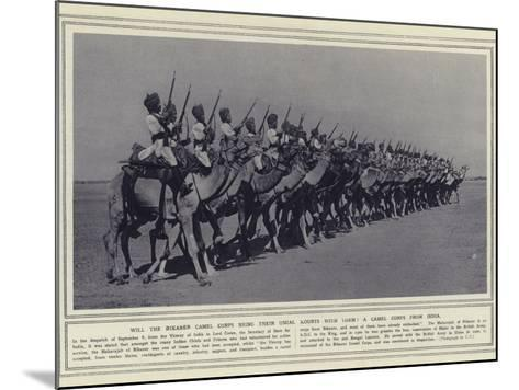 Will the Bikaner Camel Corps Bring their Usual Mounts with Them a Camel Corps from India--Mounted Photographic Print