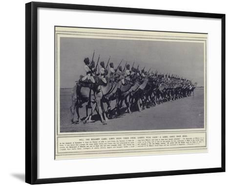 Will the Bikaner Camel Corps Bring their Usual Mounts with Them a Camel Corps from India--Framed Art Print