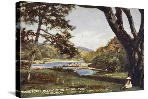 Moore's Tree, Meeting of the Waters, Ovoca, Via Holyhead and Kingstown the Royal Mail Route--Stretched Canvas Print