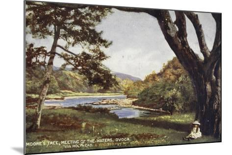 Moore's Tree, Meeting of the Waters, Ovoca, Via Holyhead and Kingstown the Royal Mail Route--Mounted Photographic Print
