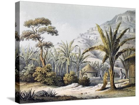 View of Huts in Enzet, Musa, Engraving from Travels of Martin Theodor Von Heuglin--Stretched Canvas Print