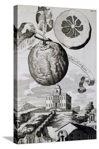 Villa Sartori-Salvatico in Battaglia Terme, 1714--Stretched Canvas Print