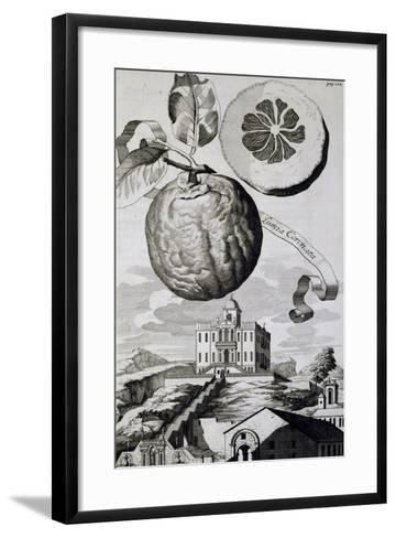 Villa Sartori-Salvatico in Battaglia Terme, 1714--Framed Art Print