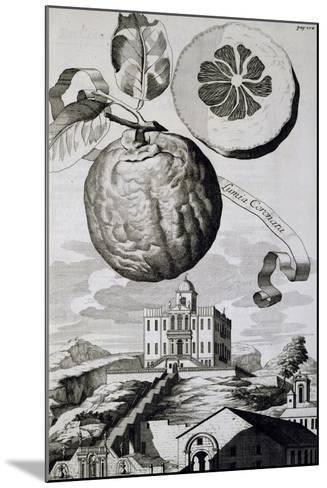 Villa Sartori-Salvatico in Battaglia Terme, 1714--Mounted Giclee Print