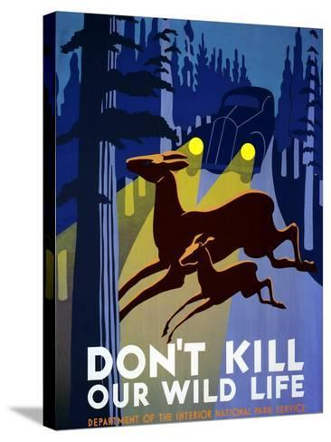 """""""Don't Kill Our Wildlife"""" , Department of the Interior, National Park Service, Washington. 1939--Stretched Canvas Print"""