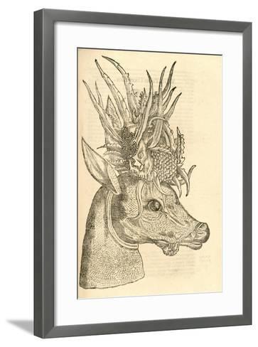 Illustration of Capreolus Polyceros from Aldrovandi's 'History of Monsters' , 1642--Framed Art Print