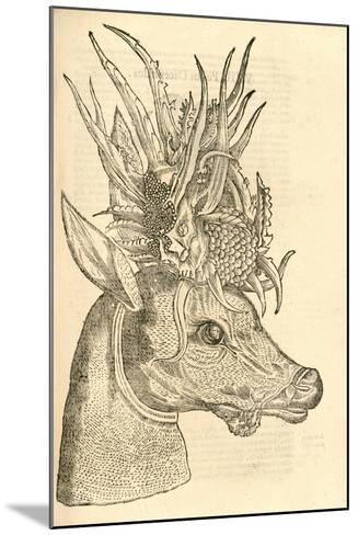 Illustration of Capreolus Polyceros from Aldrovandi's 'History of Monsters' , 1642--Mounted Giclee Print