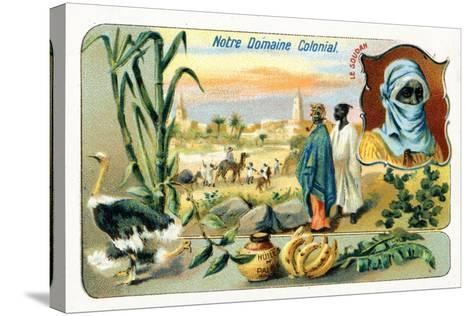 French Sudan, from a Series of Collecting Cards Depicting the Colonial Domain of France, C.1910--Stretched Canvas Print
