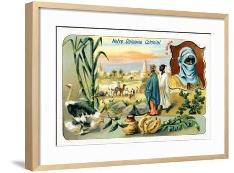 French Sudan, from a Series of Collecting Cards Depicting the Colonial Domain of France, C.1910--Framed Art Print