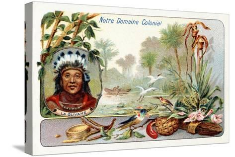 French Guiana, from a Series of Collecting Cards Depicting the Colonial Domain of France, C. 1910--Stretched Canvas Print