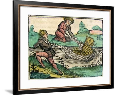 Catching a Lion Cat Fish Monster Published in the Nuremberg Chronicle, 1493--Framed Art Print