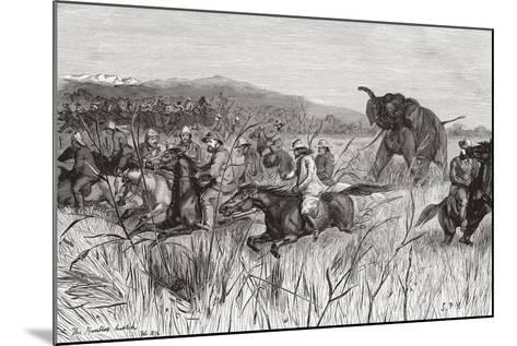 Elephant Hunters in the 19th Century Being Charged by an Elephant--Mounted Giclee Print